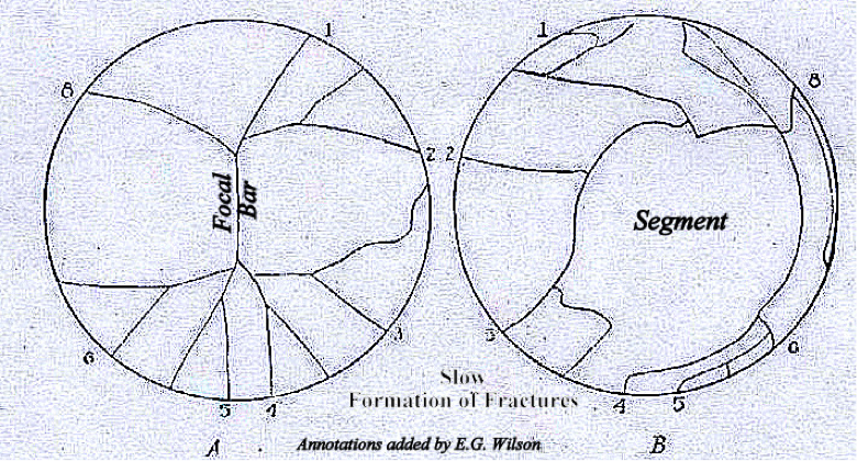 The Expanding Earth - Figure 1