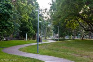 Pathway through the University of Queensland Campus